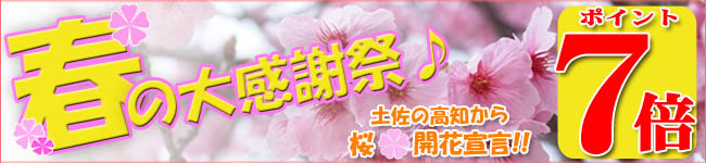 桜開花宣言春の大感謝祭ポイント7倍02